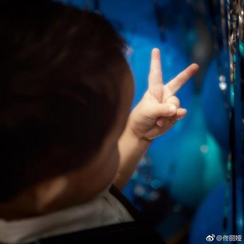 佟丽娅为儿子庆生 朵朵兰花指实力抢镜!