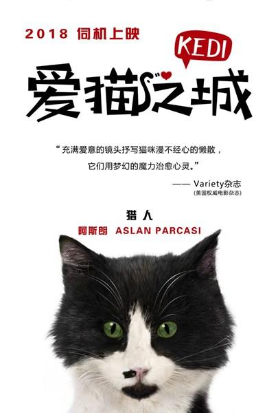 《爱猫之城》萌猫角色海报发布 七大异域风情猫萌力来袭