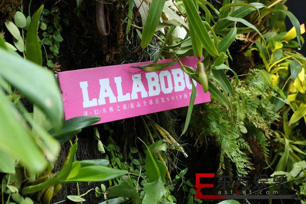 LALABOBO品牌全新升级 | 自主IP害羞熊引关注