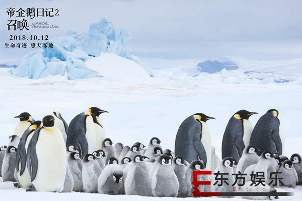《帝企鹅日记2》终极海报、预告双发 张歆艺惊喜配音预告萌翻全场