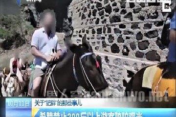 禁止肥胖游客观光 只是因为一头驴