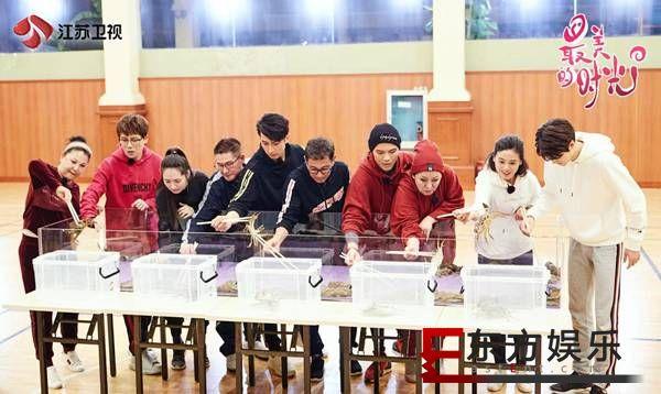 """江苏卫视《最美的时光》即将暖心上线,专访制片人张烨镝:""""让所有成年人看了节目之后"""