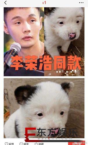 李荣浩同款狗狗售价1元 本尊回应:为什么卖那么便宜?