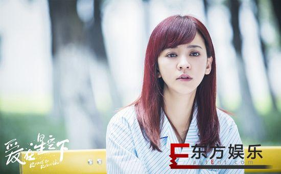 《爱在星空下》亮相浙江卫视招商会   贾乃亮陈意涵揭秘演员百态人生