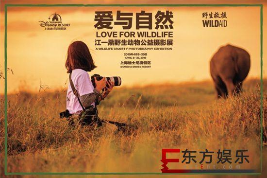江一燕迪士尼办摄影展 呼吁保护野生动物