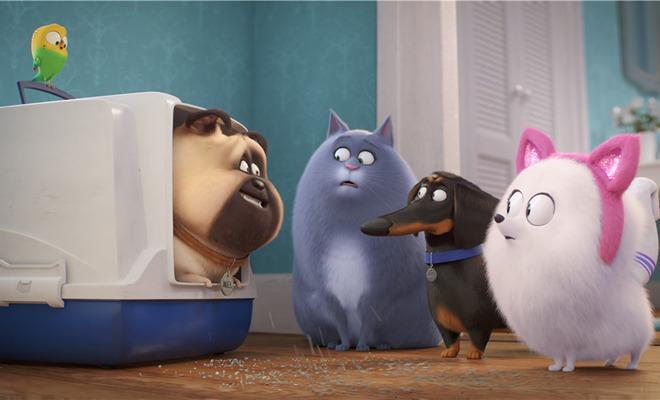 《爱宠大机密2》发布冰冰预告 高冷猫性令铲屎官深感共鸣