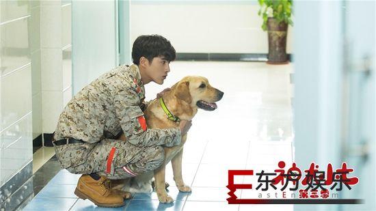 《神犬小七3》萌气爆表 姜潮宋妍霏携手萌宠救援队共同成长