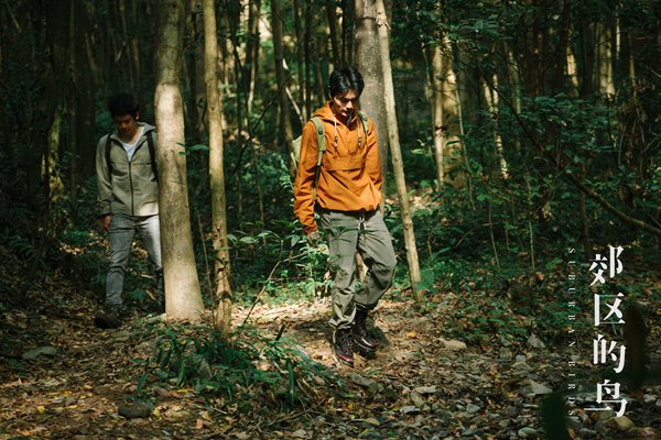 华语独立佳作《郊区的鸟》今日上映 演员邓竞首部作品引期待
